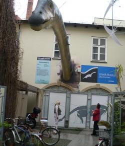 Bayreuth | Urwelt-Museum Oberfranken
